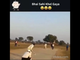funny cricket